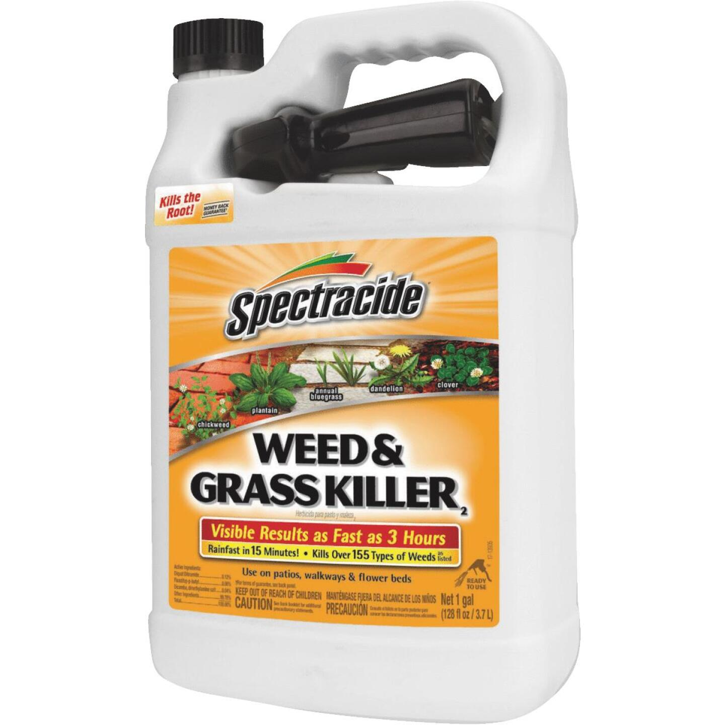 Spectracide 1 Gal. Ready To Use Trigger Spray Weed & Grass Killer Image 1